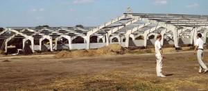 Строительство свинокомплекса, Неофорс