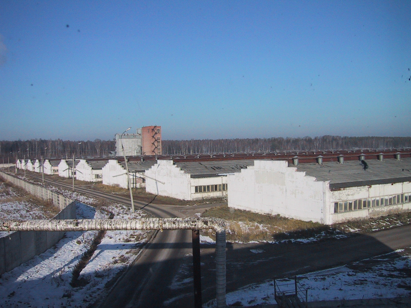 Свинокомплекс Восточный, реконструкция здания для откорма свиней, Неофорс